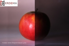 rastuoti-stiklai-6mm-stopsol-classic-grey-fix